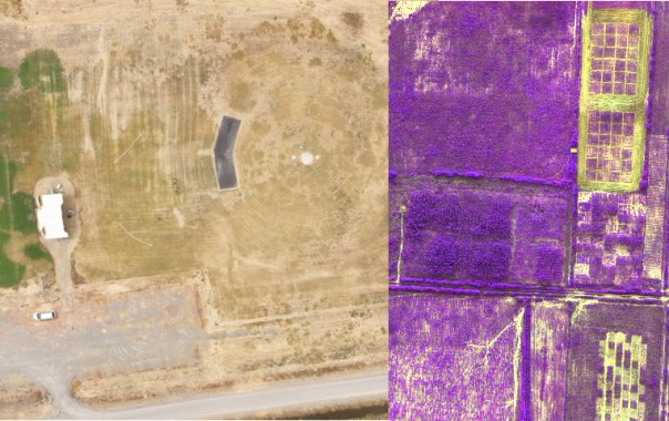 Results from Drone Imaging
